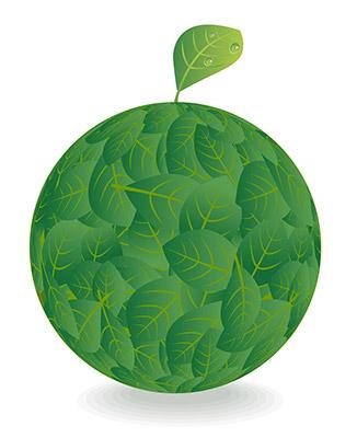 leaf globe